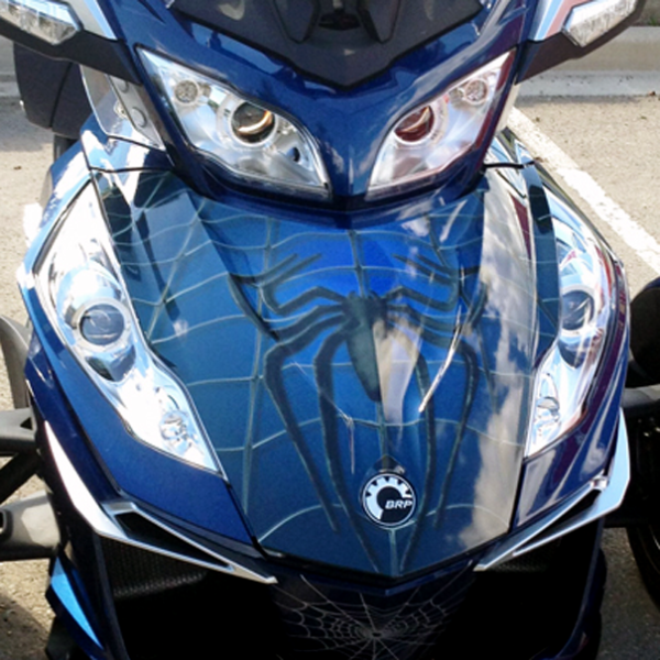 Spidy-on-Web-Blue-front